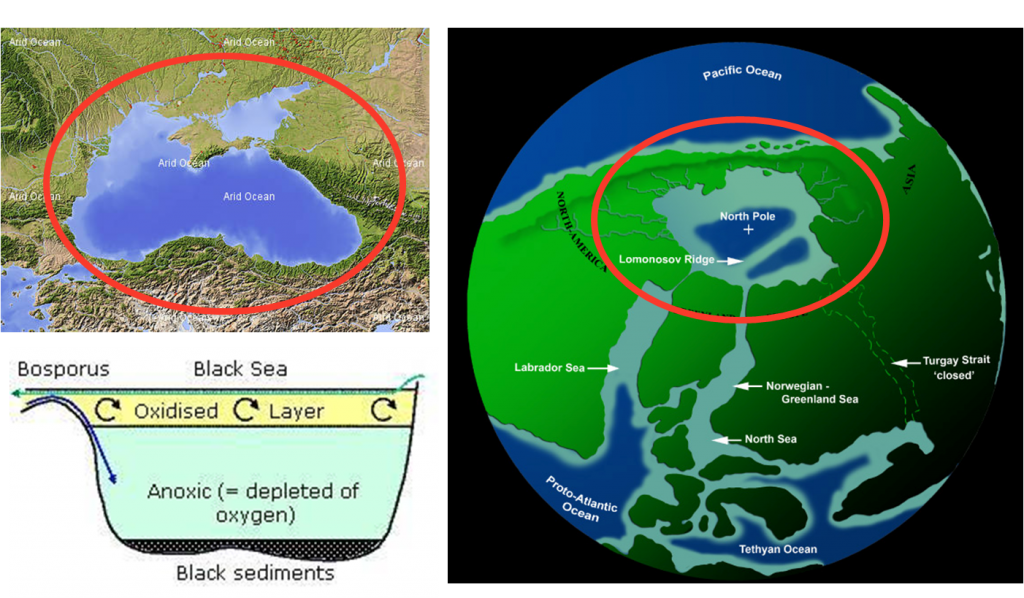 The similarity between today's Black Sea and the Arctic Ocean 50 million years ago is striking.