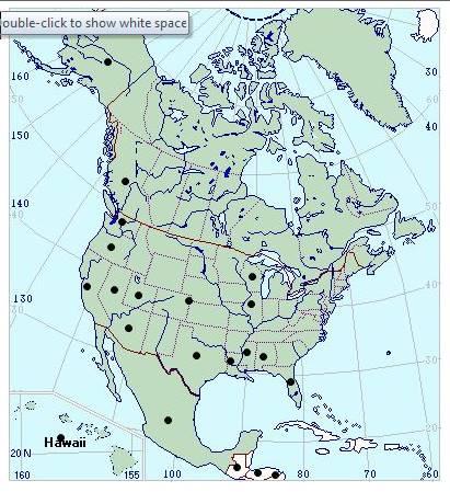 A filiculoides america